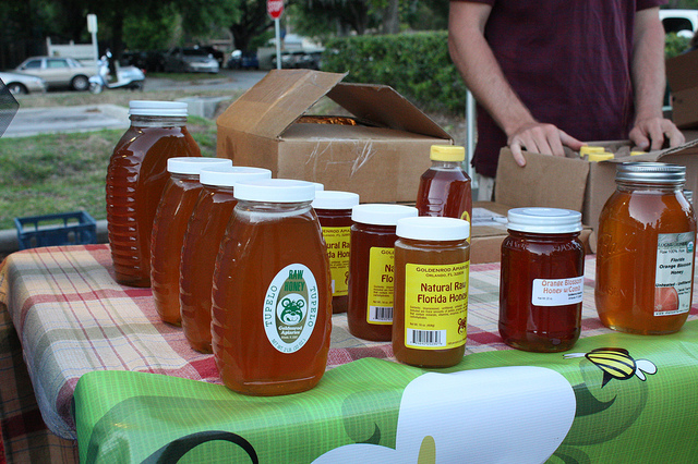 Reminiscing the Taste of Tupelo and Palmetto Honey