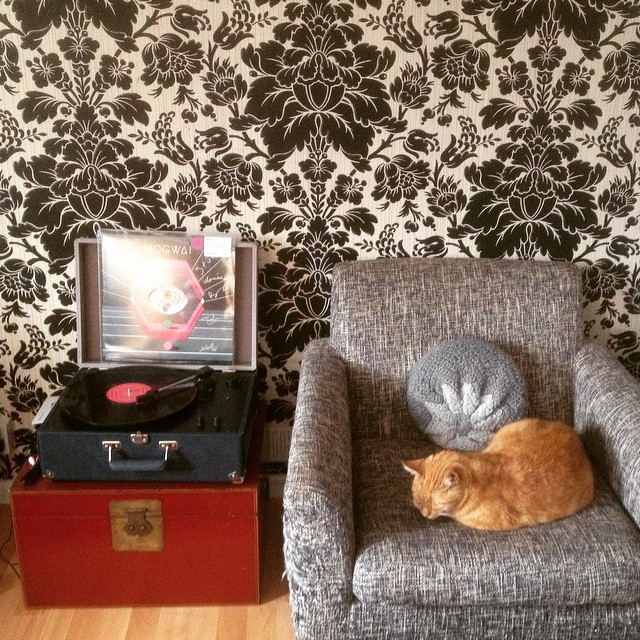 zizzou and the record player